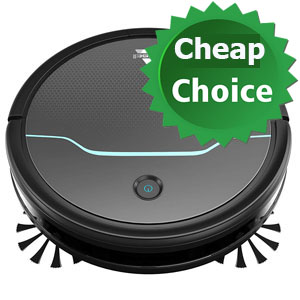 BISSELL EV675 cheap choice
